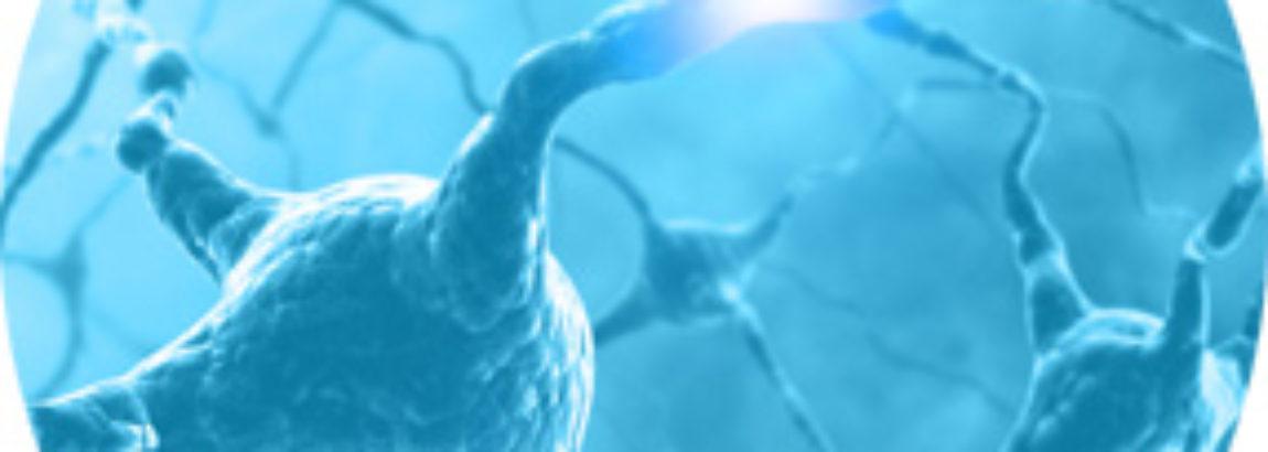 Terapia Neuralna – informacje praktyczne